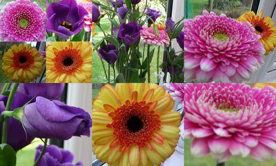 Gorgeous colours1